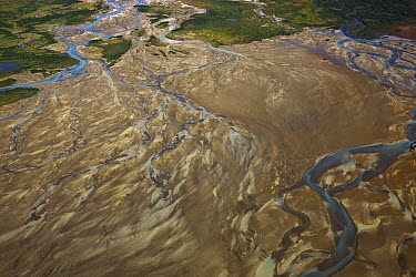 Braided river delta showing floodplain, channel bars and channels, Katmai, Alaska  -  Theo Allofs