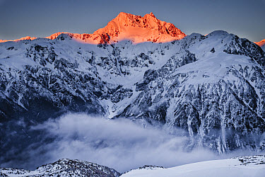 Mount Rolleston with dawn light, it is the dominant peak of Arthur's Pass National Park, Canterbury, New Zealand  -  Colin Monteath/ Hedgehog House