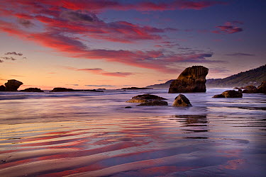 Sunset on beach north of Punakaiki, Paparoa National Park, New Zealand  -  Colin Monteath/ Hedgehog House