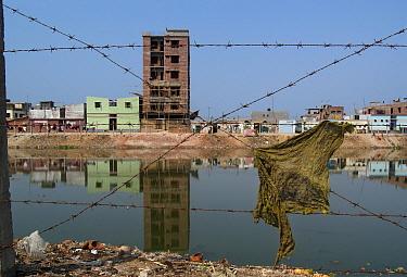 Contaminated standing water that causes disease in slums of Dhaka, Bangladesh  -  Albert Lleal