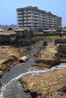 Sewage and shacks in Dhaka slum, Bangladesh  -  Albert Lleal