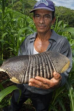 Nine-banded Armadillo (Dasypus novemcinctus) held by farmer in his corn field, El Salvador  -  Albert Lleal