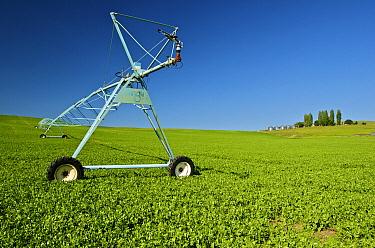 Irrigation sprinkler in field, Enterprise, Oregon  -  James Christensen