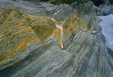 Schist eroded by Franz Josef Glacier showing glacial polish, Westland National Park, New Zealand  -  Jean-Paul Ferrero/ Auscape