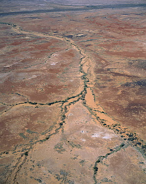 Rocky desert wtih dry riverbeds and tributaries, southern Australia  -  Jean-Paul Ferrero/ Auscape