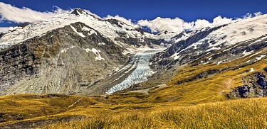 Dart Glacier above Cascade Saddle, Mount Aspiring National Park, New Zealand  -  Colin Monteath/ Hedgehog House