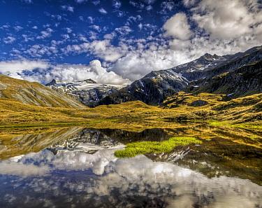 Mount Tyndall, reflection in tarn at Cascade Saddle, Mount Aspiring National Park, New Zealand  -  Colin Monteath/ Hedgehog House