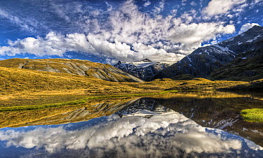 Mount Tyndall, reflection in tarn, Cascade Saddle, Mount Aspiring National Park, New Zealand  -  Colin Monteath/ Hedgehog House