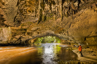 Moria Gate Arch with limestone stalagtites on roof and tourist watching swollen Oparara River, Kahurangi National Park, near Karamea, New Zealand  -  Colin Monteath/ Hedgehog House
