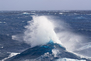 Waves of the Southern Ocean off South Georgia Island  -  Konrad Wothe
