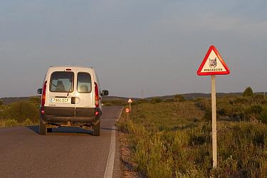 Spanish Lynx (Lynx pardinus) traffic sign, Donana National Park, Huelva, Andalusia, Spain  -  Pete Oxford