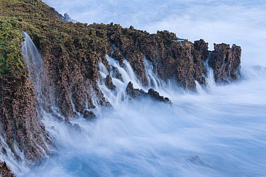 Water cascading down cliffs into ocean, Christmas Island National Park, Christmas Island, Indian Ocean, Territory of Australia  -  Ingo Arndt