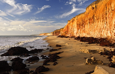 Costa Dourada Beach with cliffs, Bahia State, Brazil