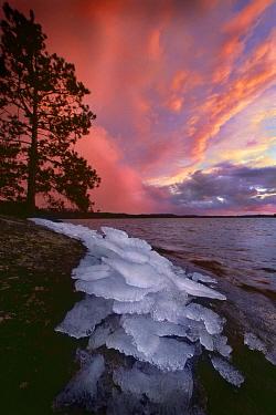 Ice along the shore of Burntside Lake at sunset, Superior National Forest, Minnesota  -  Jim Brandenburg