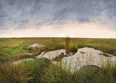 Sioux Quartzite on tallgrass prairie, Blue Mounds State Park, Minnesota  -  Jim Brandenburg