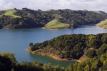 Powerlines spanning over Briones Reservoir, Orinda, California  -  Sebastian Kennerknecht