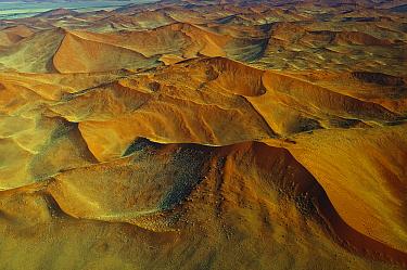 Sand dunes, Namib Desert, Namibia  -  Sergey Gorshkov