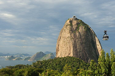 Gondola going up Sugarloaf Mountain, Rio de Janeiro, Brazil  -  Pete Oxford