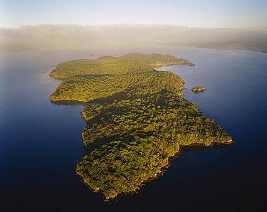 Islands, Rakiura National Park, Stewart Island, New Zealand  -  Rob Brown/ Hedgehog House