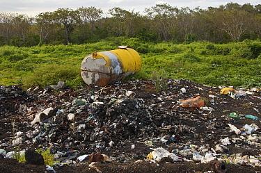 Landfill in the highlands of Santa Cruz Island, Galapagos Islands, Ecuador  -  Pete Oxford