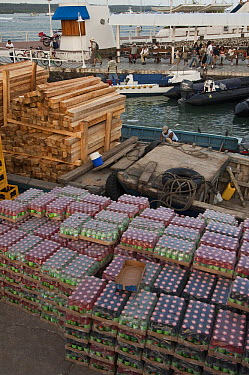 Unloading cargo on the dock, Puerto Ayora, Santa Cruz Island, Galapagos Islands, Ecuador  -  Pete Oxford