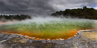 Champagne Pool as burst of sunshine lights up foreshore during day with blowing mist and heavy rain, Waiotapu Thermal Wonderland, Rotorua, New Zealand  -  Colin Monteath/ Hedgehog House
