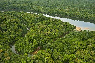 Essequibo River, Iwokrama Rainforest Reserve, Guyana  -  Pete Oxford