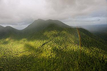 Rainbow over rainforest and Kanuku Mountains, Upper Takutu-Upper Essequibo, Guyana  -  Pete Oxford