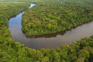 Rainforest and Essequibo River, Iwokrama Rainforest Reserve, Guyana  -  Pete Oxford