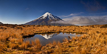 Mount Taranaki reflected in small tarn on slopes of Pouakai Range, New Zealand  -  Colin Monteath/ Hedgehog House