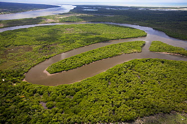 Caravelas River estuary and mangrove forest, Caravelas, southern Bahia, Brazil  -  Luciano Candisani