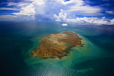 Sebastiao Gomes Reef, Caravelas, southern Bahia, Brazil  -  Luciano Candisani