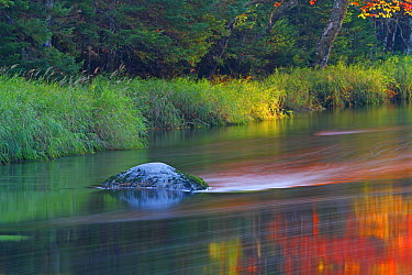 Fall color water reflections, Mersey River, Kejimkujik National Park, Nova Scotia, Canada  -  Scott Leslie