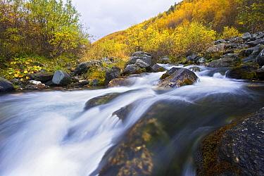 River in autumn, Grimsdalen, Rondane, Norway  -  Heike Odermatt