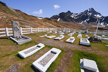 Grave of Earnest Shakelton and others, South Georgia Island  -  Flip  Nicklin