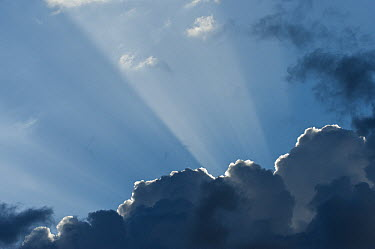 Sunrays coming through cumulus cloud, Extremadura, Spain  -  Pete Oxford