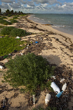 Beach trash, Sian Ka'an Biosphere Reserve, Quintana Roo, Mexico  -  Pete Oxford