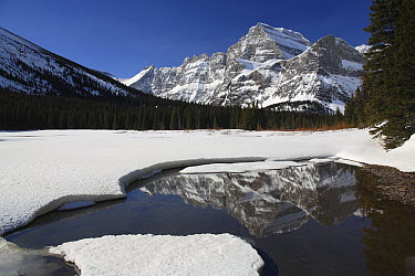 Mount Gould reflected in Swiftcurrent Lake, Glacier National Park, Montana  -  Sumio Harada
