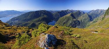 Straights as seen from Deer Mountain, Ketchikan, Tongass National Forest, Alaska  -  Matthias Breiter