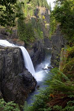 Elk Falls near Campbell River, British Columbia, Canada  -  Matthias Breiter