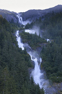 Creek and waterfalls swollen with melt water from glaciers after a heat wave, Alaska  -  Matthias Breiter