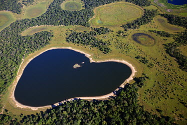 Saltwater lake in southern Pantanal shaped like a heart, Brazil  -  Luciano Candisani