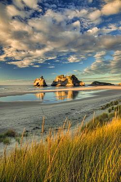 Evening light on sand dunes, Archway Islands behind, Wharariki Beach near Collingwood, Golden Bay, New Zealand  -  Colin Monteath/ Hedgehog House