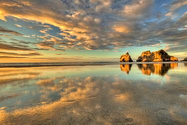 Archway Islands, Wharariki Beach near Collingwood, Golden Bay, New Zealand  -  Colin Monteath/ Hedgehog House