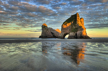 Archway Islands at sunrise, Wharariki Beach near Collingwood, Golden Bay, New Zealand  -  Colin Monteath/ Hedgehog House