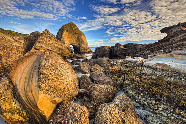 Sedimentary rock with pebbles embedded in layers, Wharariki Beach near Collingwood, Golden Bay, Archway Islands, New Zealand  -  Colin Monteath/ Hedgehog House