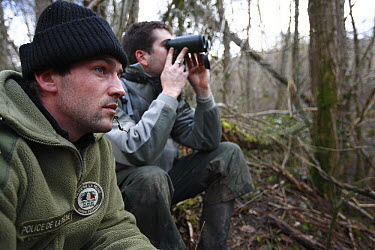 Environmental police and fishing guard watching for illegal frog harvesting, Jura, France  -  Cyril Ruoso
