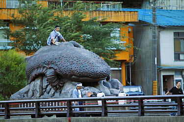 Japanese Giant Salamander (Andrias japonicus) statue at the festival in Yubara, Honshu, Japan  -  Cyril Ruoso