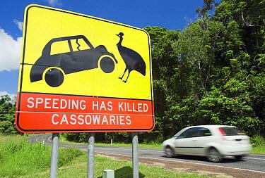Cassowary warning sign on major highway, Mission Beach, Queensland, Australia  -  Kevin Schafer