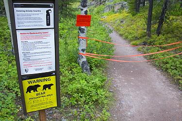 Bullhead Lake trailhead closed due to Grizzly siting, Glacier National Park, Montana  -  Donald M. Jones